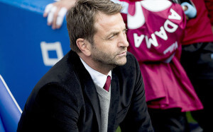 tim sherwood 1_3476104b